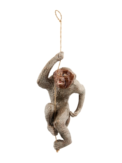 Picture of Monkey Hanging on Rope