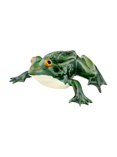 Picture of Large Frog Laying Down