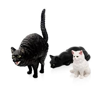 Imagen para la categoría Gatos